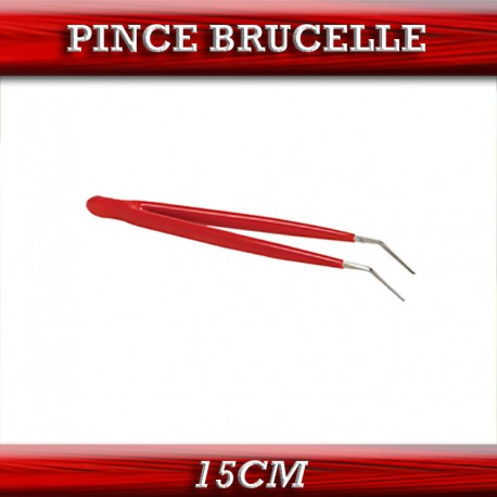 PINCE BRUCELLE