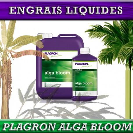 PLAGRON – ALGA BLOOM